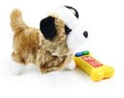 Pes na kabel, chodí a štěká 4 druhy