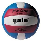 BV5011S Pro Line volejbalový míč