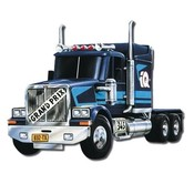 Auto WS RACING TRUCK stavebnice MS 43 0107-43