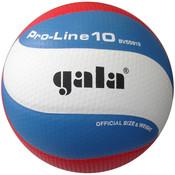 Volejbalový míč Gala Pro-Line 10