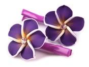 Vlasová sponka 30x50mm s ozdobou FIMO květina (1 pár)