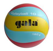 Volejbalový míč Volleyball 10