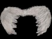 Andělská křídla 30x48cm