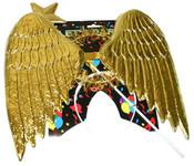 Křídla andělská plastová, svatozář