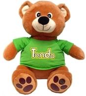 Pohádkový medvídek TONDA v triku na baterie se Zvukem