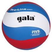 BV5591S Pro Line volejbalový míč