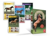 Karty Kvarteto Koně