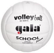 BV5031S School Foam volejbalový míč